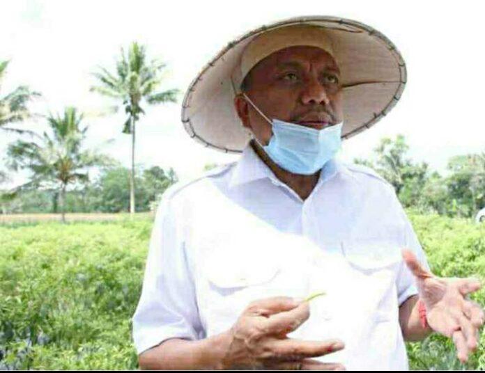 Majukan Pertanian dan Ekspor Sulut Olly Dondokambey Sabet Indonesia Award (IA)-IV 2020